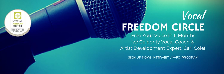 Green VFC Blog Banner TW 1 Musician Shop Talk: The Art of Daily Practice with Devotion vs. Discipline